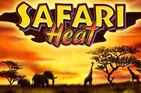 Safari Heat игровой аппарат